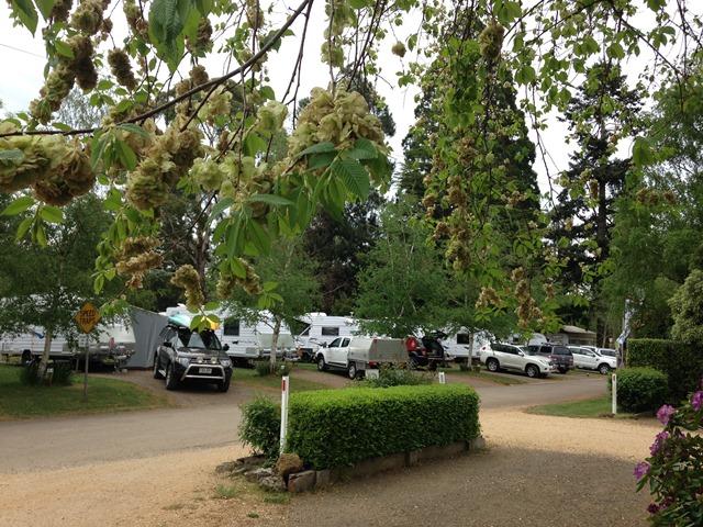 Caravan Parks for Sale Vic